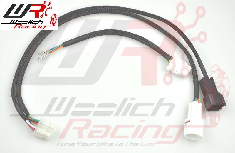 2005-2006 Kawasaki ZX6R - Log Box (Denso) v3 + Zeitronix ZT-3 Wideband O2 Package